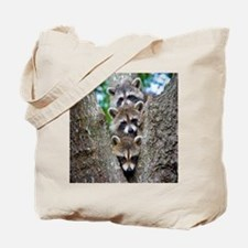 Baby Raccoon Trio Tote Bag