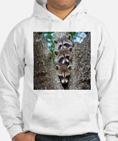 Baby Raccoon Trio Jumper Hoody