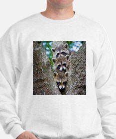 Baby Raccoon Trio Jumper