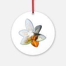 Mini Mark Holm Orchid Ornament (Round)