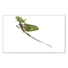 Green Drake Rectangle Decal