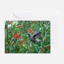 Hummingbird Heaven Greeting Card