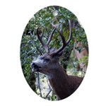 Buck and Doe Oval Ornament