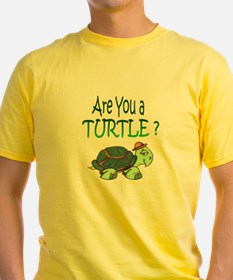 turtle w/back design T