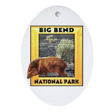 Big Bend National Park Oval Ornament