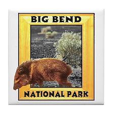 Big Bend National Park Tile Coaster
