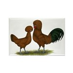 Polish Red Chickens Rectangle Magnet (10 pack)