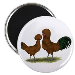 Polish Red Chickens Magnet