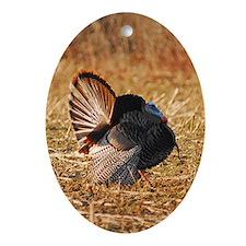 Struttin Turkey Oval Ornament
