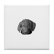 Cuteness Plus - Curly Pup Tile Coaster