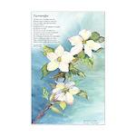 Surrender/Pacific Dogwood Mini Poster Print
