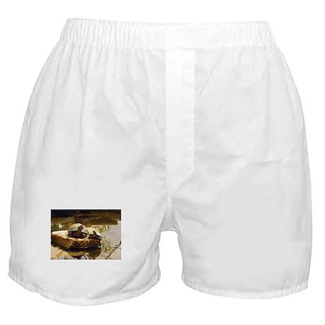 Turtle Pals Boxer Shorts
