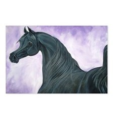 Black Arabian Horse Postcards (Package of 8)