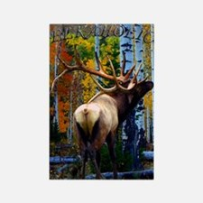 Bull elk,Rectangle Magnet