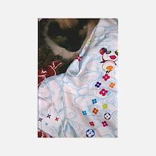 Maile's Louis Vuitton Cat Rectangle Magnet