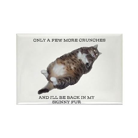 Skinny Fur Rectangle Magnet (10 pack)