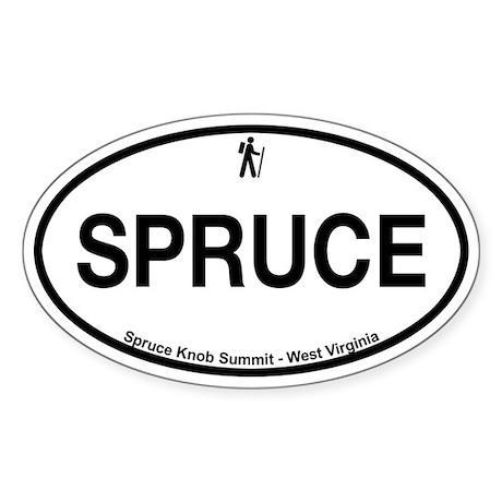 Spruce Knob Summit