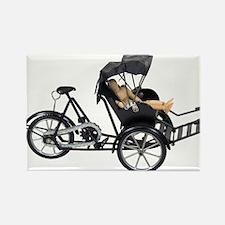 Energy efficient rickshaw Rectangle Magnet (100 pa