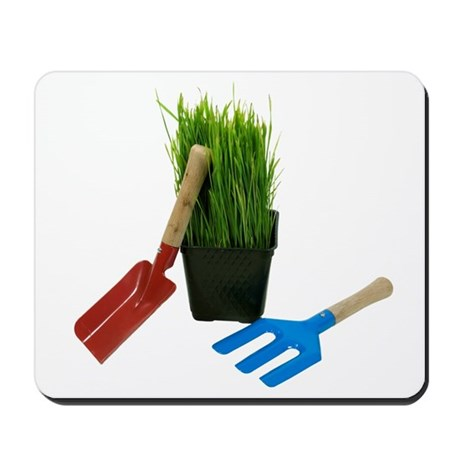 Little garden Mousepad