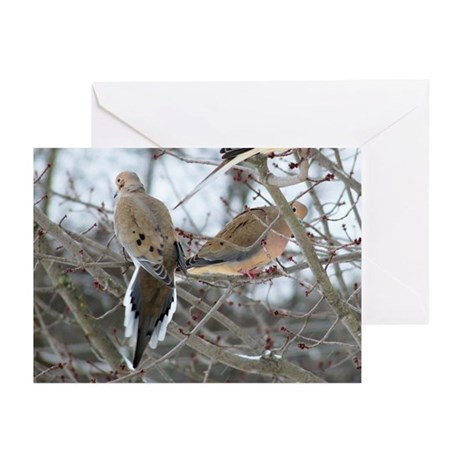 Mourning Doves Greeting Cards (Pk of 10)