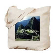 Cute Inca Tote Bag