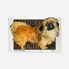 "Pekingese ""Tough Tiger Bailey"" my first dog... Rec"