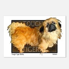 "Pekingese ""Tough Tiger Bailey"" my first dog... Pos"