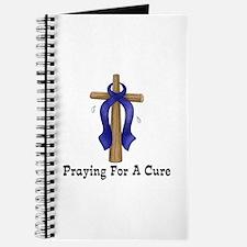Blue Ribbon Prayer Journal
