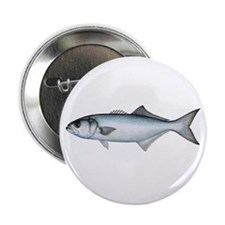 "Blue Fish 2.25"" Button (10 pack)"