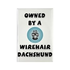 Owned by a Wirehair Doxie Rectangle Magnet