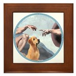 Creation/Labrador (Y) Framed Tile