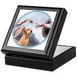 Creation/Labrador (Y) Keepsake Box
