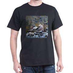Killdeer T-Shirt