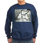 Helmet Pigeons Sweatshirt (dark)