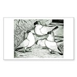 Helmet Pigeons Rectangle Sticker 10 pk)