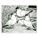Helmet Pigeons Small Poster