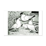 Helmet Pigeons Mini Poster Print