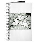 Helmet Pigeons Journal