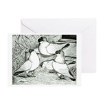 Helmet Pigeons Greeting Cards (Pk of 10)