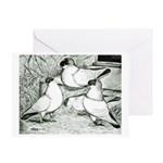 Helmet Pigeons Greeting Card