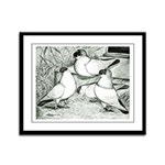 Helmet Pigeons Framed Panel Print