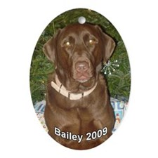 Bailey 2009 Oval Ornament