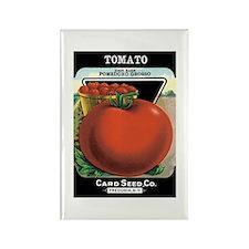 Vintage Tomato Rectangle Magnet