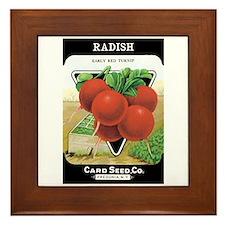 Vintage Radish Framed Tile