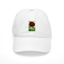 red sunflower Baseball Cap