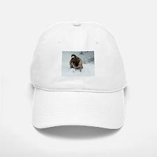 Snow Shar-Pei Baseball Baseball Cap