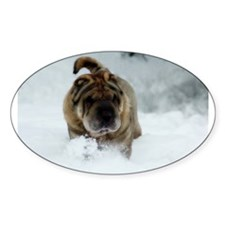 Snow Shar-Pei Oval Decal