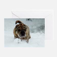 Snow Shar-Pei Greeting Card