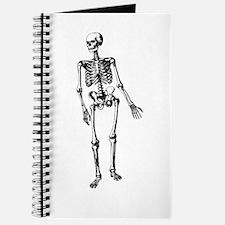 Full Skeleton Journal