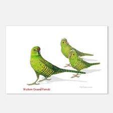Western Ground Parrot Postcards (Package of 8)
